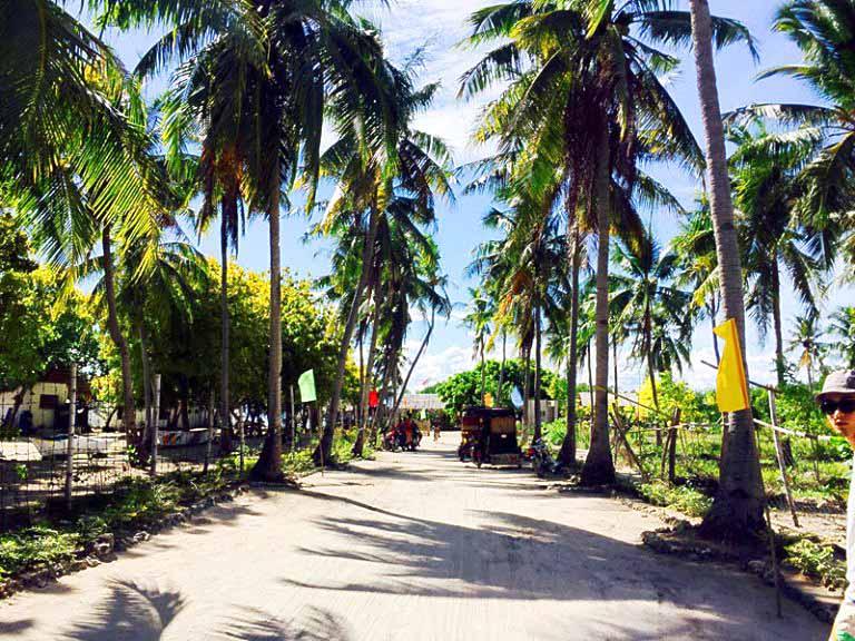 オランゴ島のビーチ周辺