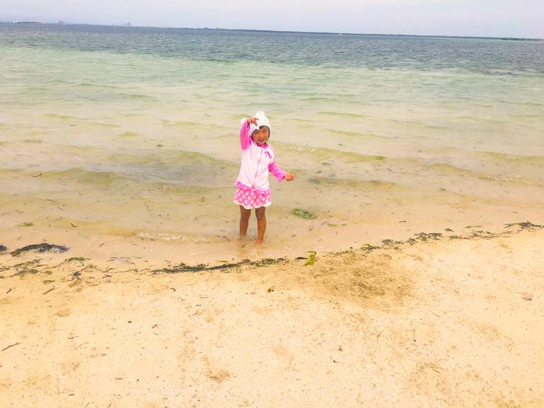貝殻を拾っている子供