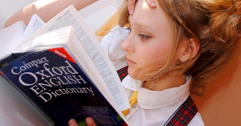 辞書はどれが良いの?
